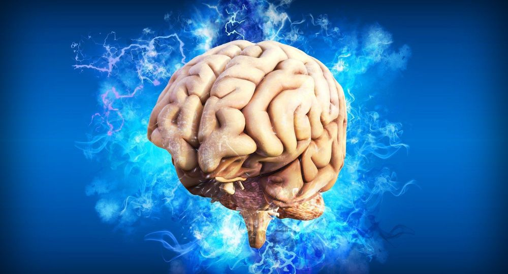 Todo pasa por nuestro cerebro